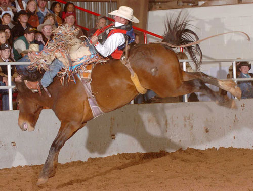 Karlon Knudson riding bareback at the Alva rodeo