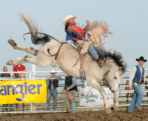 Karlon Knudson in the bareback riding at Fort Hays State over the weekend.