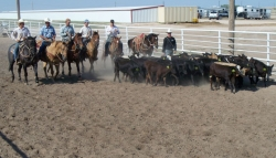 Calf-roping--bull-riding-Schools-2011-100.jpg