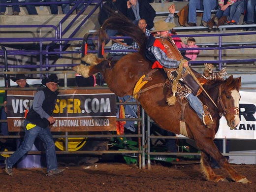 News Panhandle State Rodeo Picks Up Where They Left Off