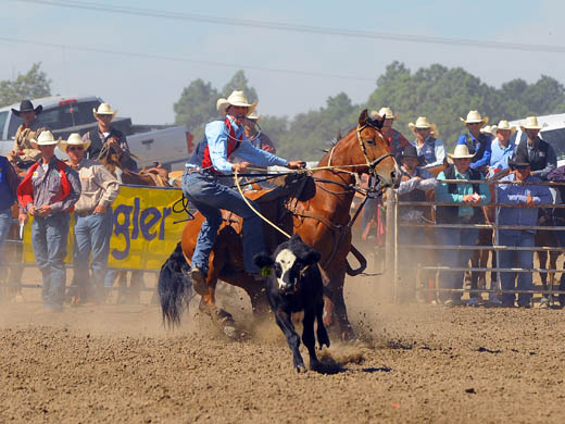 Caleb Bullock competes in the tie down roping earlier this year at the Colby Community College Rodeo. Bullock is currently situated near the top in the tie down roping standings for the Central Plains Region. –Photo by Dale Hirschman