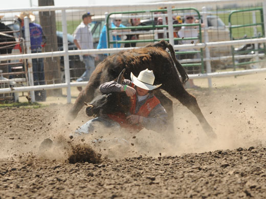 Dusty Moore earned the steer wrestling championship in Hays, Kan. over the weekend.—Provided photo