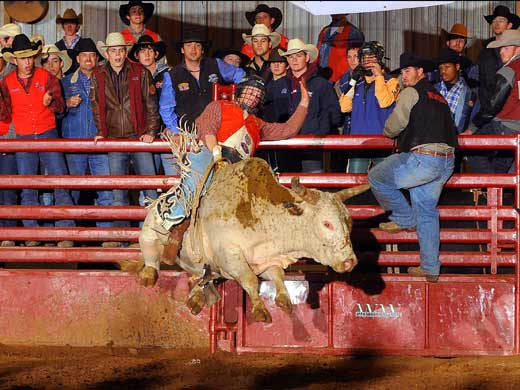 Joe Frost's second place finish in the bull riding average helped secure his all-around title at the Alva Rodeo this past weekend. –Photo courtesy of Dale Hirschman