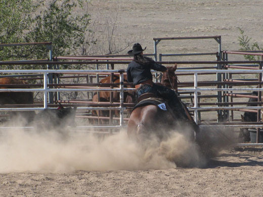 Katy Doke shows her horse R. J. in the Working Ranch Horse class in Dodge City.—Channing Hawks photo