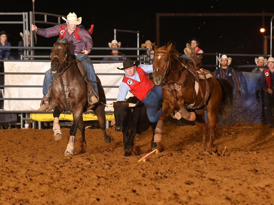 Will Martin earned the Men's All-Around title, the Bareback Riding title, and split second and third in the average of the steer wrestling at theSoutheastern Oklahoma State University College Rodeo this past weekend.—Photo by Dale Hirschman