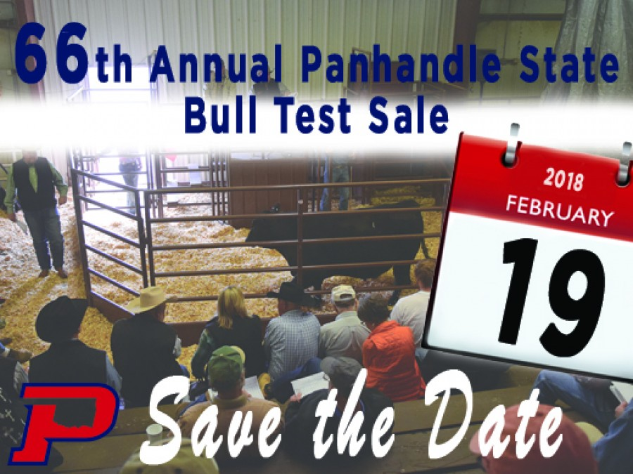 The sale is set for Monday, February 19, 2018 in the England Activity Building at the University Farm in Goodwell beginning at 1 p.m.