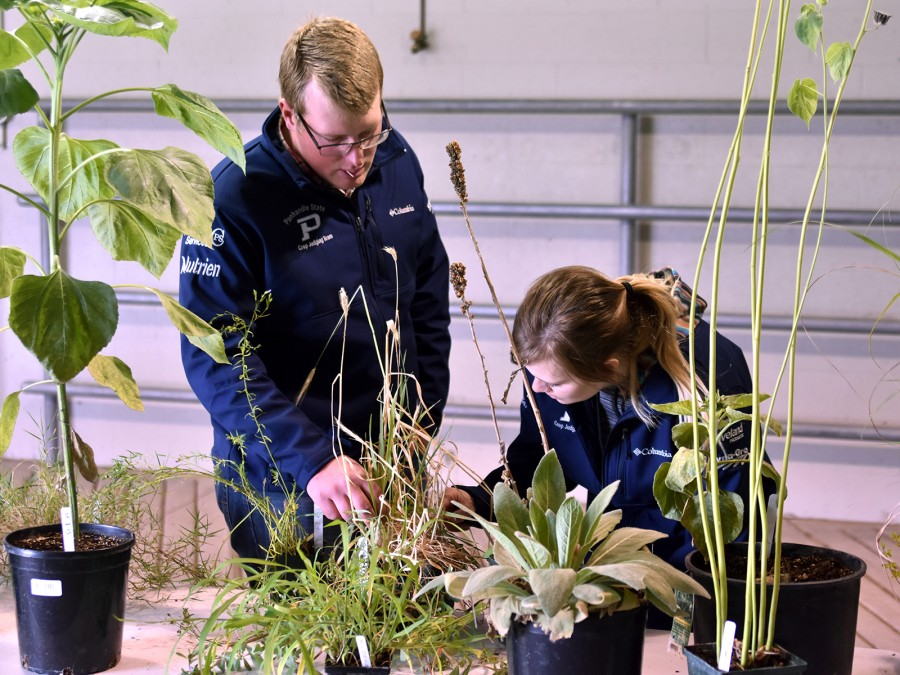 The Crops Judging Team recently competed in three contests at the NACTA Judging Conference in Norfolk, Neb. —Courtesy photos
