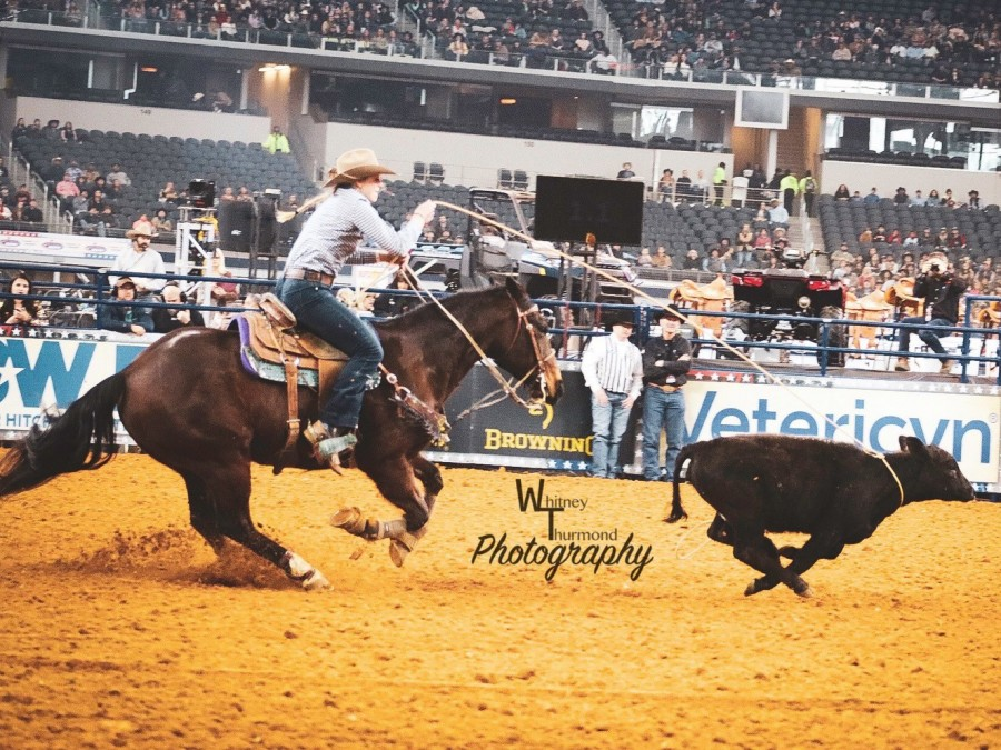 Panhandle State's very own Beau Peterson is a part of the first ever Breakaway Roping event at The American in Arlington, Texas. —Photo by Whitney Thurmond Photography