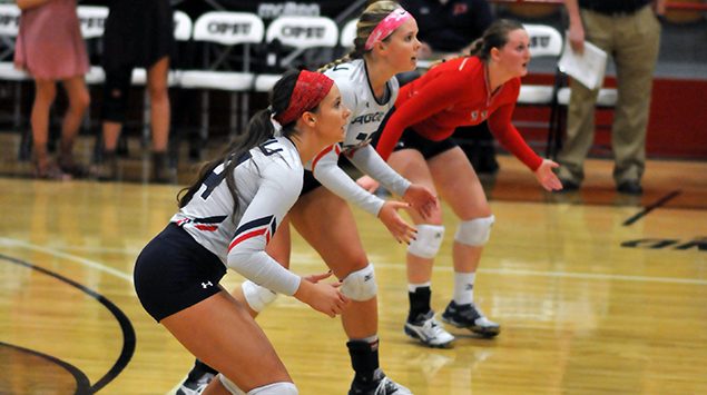 volleyball heartland conference and st edward Mary dejute arrived at st edward's in preparation for the 2015 volleyball season in 2016, seu took a jump in the heartland conference standings finishing at 9-5 in league play to finish in a tie for third place the hilltoppers went 10-18 overall and dejute coached the first seu all-conference player since 2014 when morgan beckham was named h.